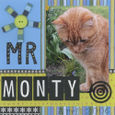Mr Monty