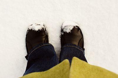 Fresh snow_sm