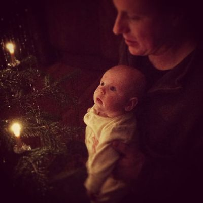 Anja tree lighting_sm