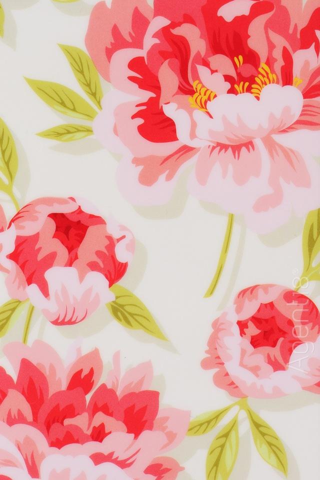 2013-06-20 - lush pink blooms