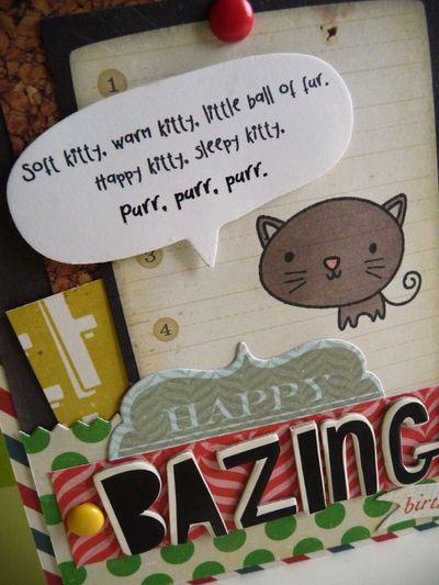 Soft Kitty - close-up - koolkittymusings.typepad.com