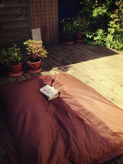 Sunshine reading_sm