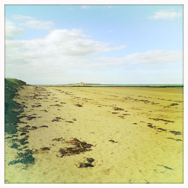 Hauxley beach_sm