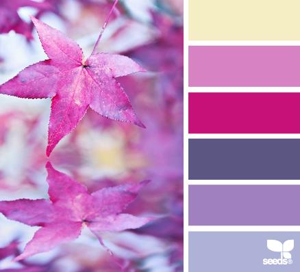 DCM Sept colour combo_sm