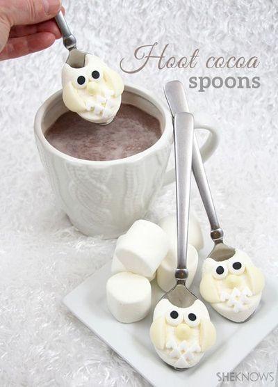 2014-16-01 - Hoot cocoa spoons