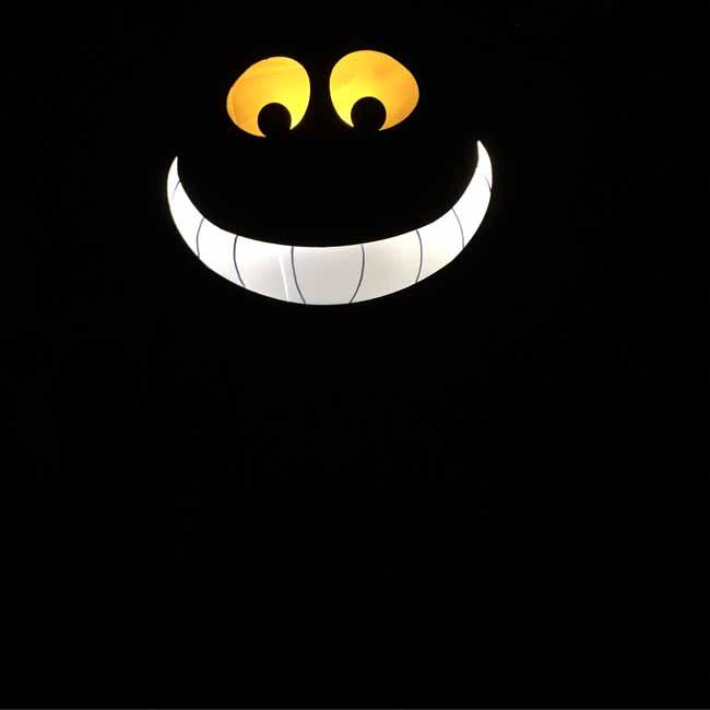 Cheshire cat_sm