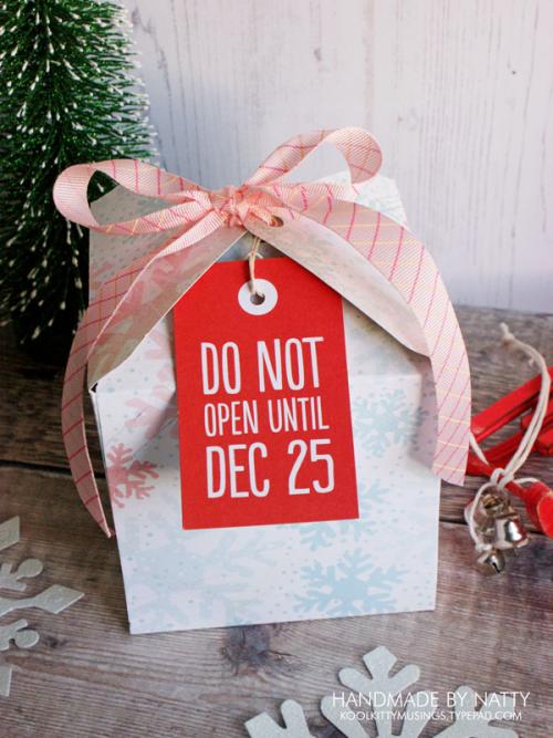 Christmas gift box - 2017-11-16 - koolkittymusings.typepad.com