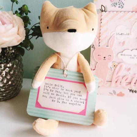 Mr B. Fox esq._sm
