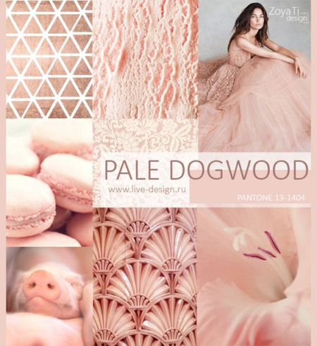 05 - Pale Dogwood