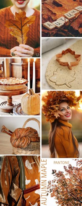 10 - Autumn Maple