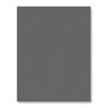 Simon Says Stamp - Slate Gray cardstock