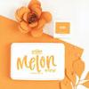 The Stamp Market - Melon Orange ink pad